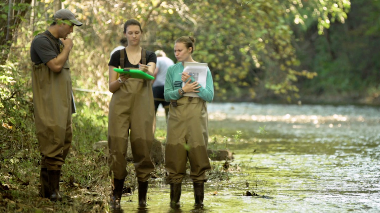 Students standing in stream taking notes.